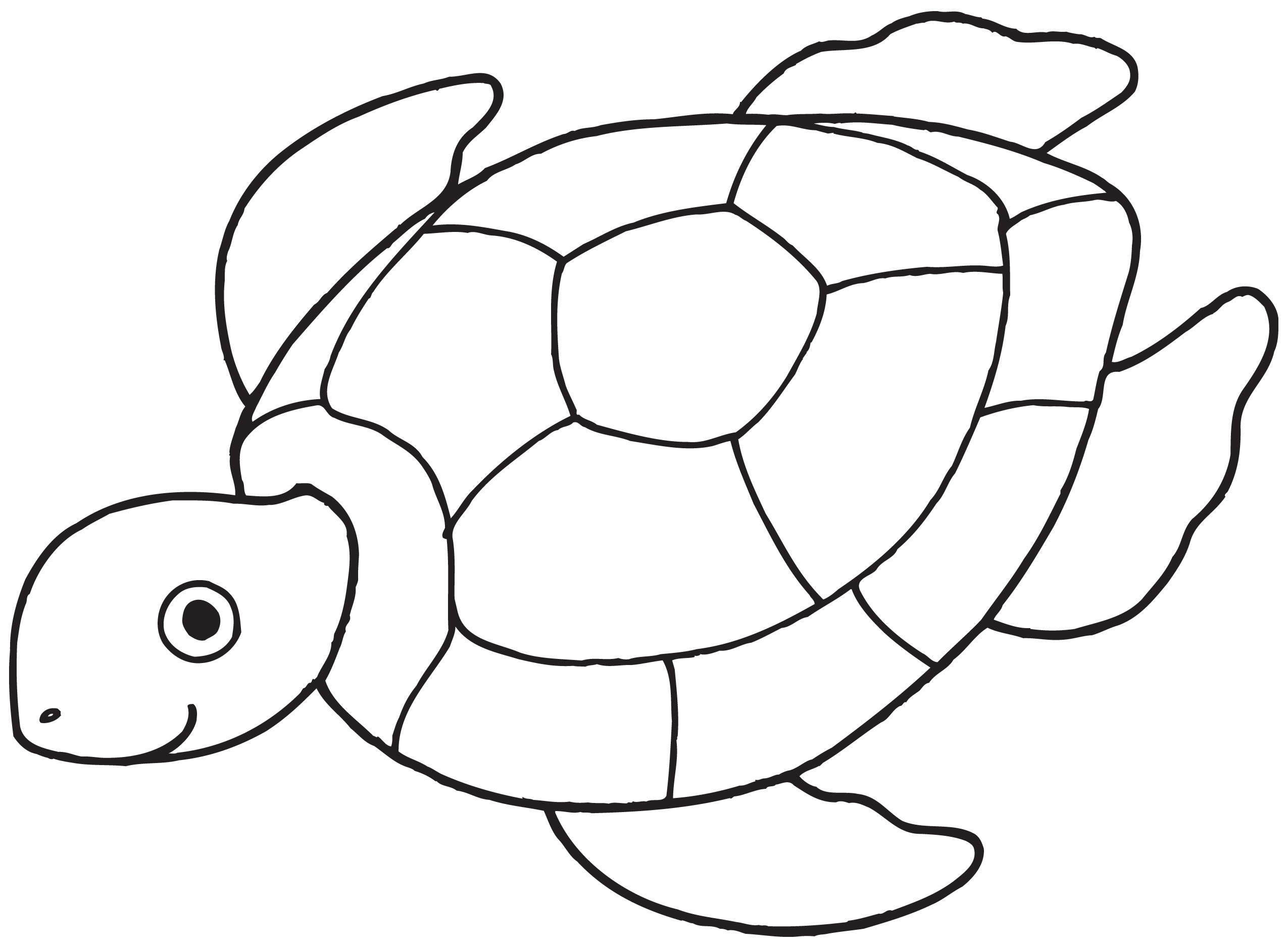 2550x1876 Easy Sea Turtle Drawing How To Draw A Sea Turtle, Cartoon Sea