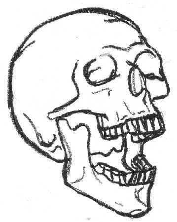 359x450 Skull Drawing Simple