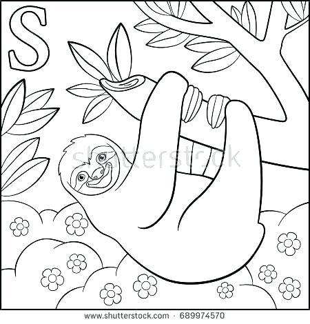 cartoon sloth drawing at getdrawings | free download