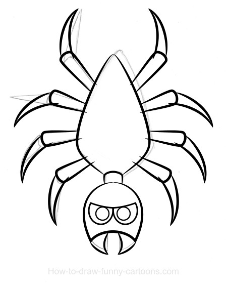 450x569 Spider Drawing (Sketching + Vector)