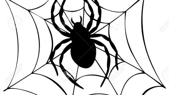 570x320 Cartoon Spider Drawing Silhouette Of Spider In Web