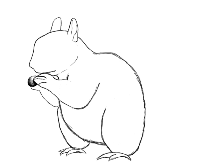 780x581 How To Draw A Squirrel