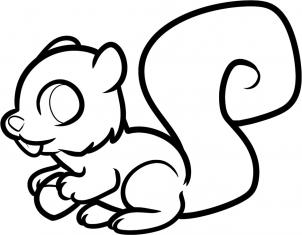 302x235 How To Draw How To Draw A Squirrel For Kids