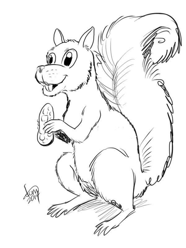 600x800 Sketch A Day 003 Cartoon Squirrel By Davidcmatthews