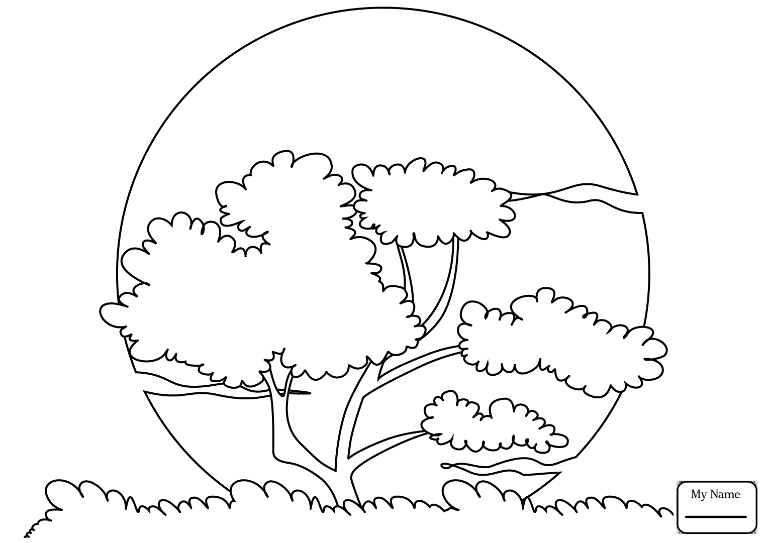 1530x1081 Nature Seasons Cartoon Star Character Coloring Pages