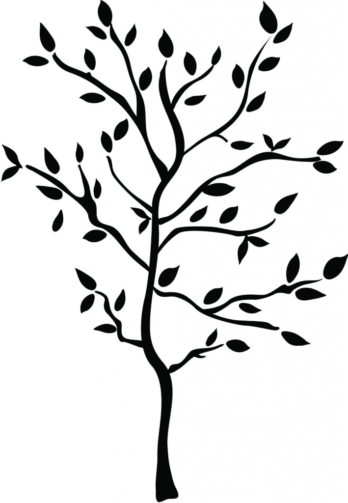 709x1024 Drawings Of Trees With Branches Cartoon Trees With Branches
