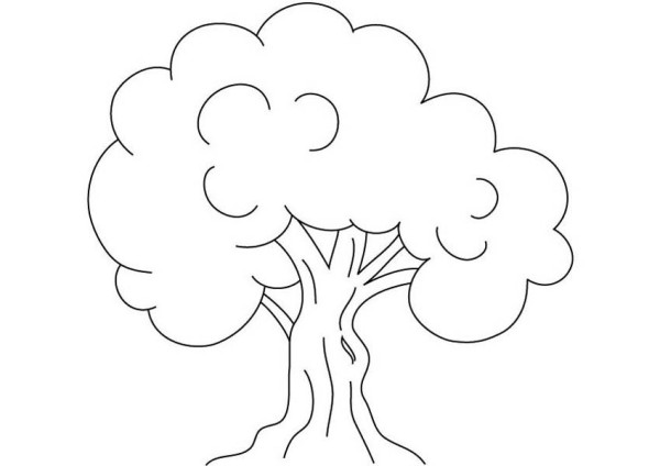 600x424 Kids Drawing Of An Oak Tree Coloring Page Color Luna