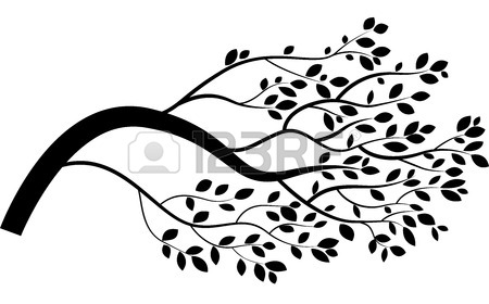 450x280 Cartoon Tree Branch Royalty Free Cliparts, Vectors, And Stock