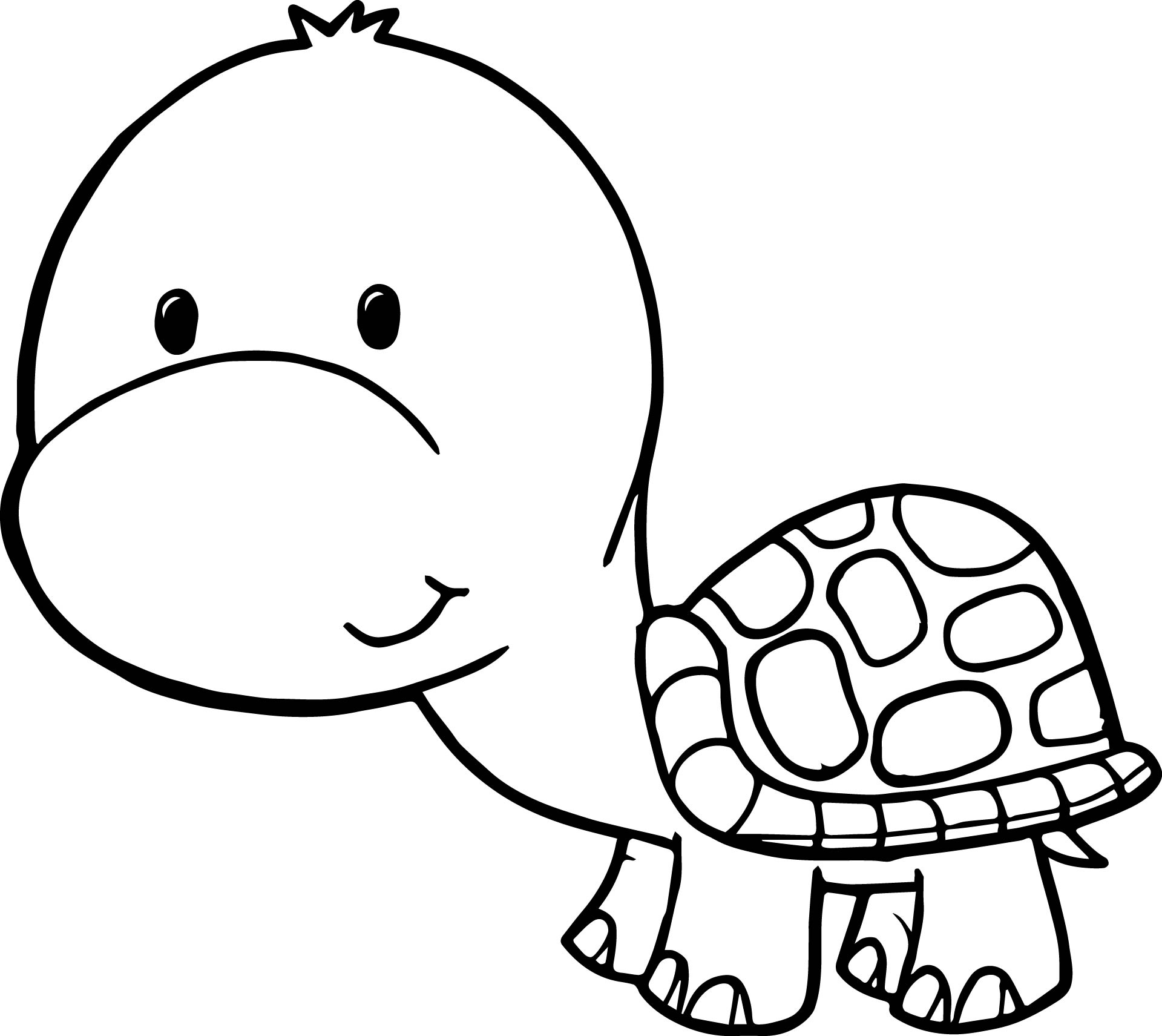 turtle cartoon coloring pages - photo#5