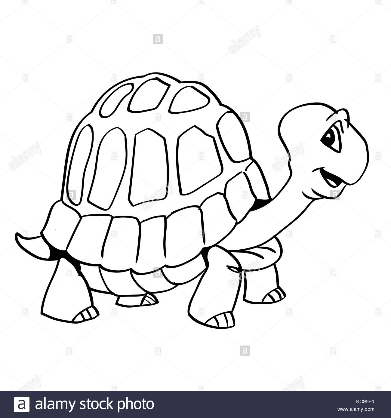 1300x1390 Cartoon Turtle Stock Photos Amp Cartoon Turtle Stock Images