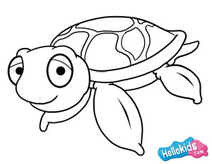 300x233 Coloring Pages Cartoon Turtle Drawing How To Draw Sea 8 Ux2