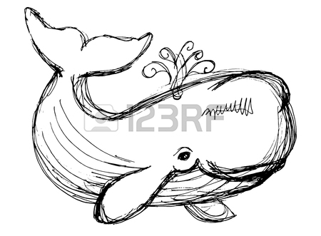450x331 The Whale Drawing. Hand Drawn Illustration With Whale. Animal
