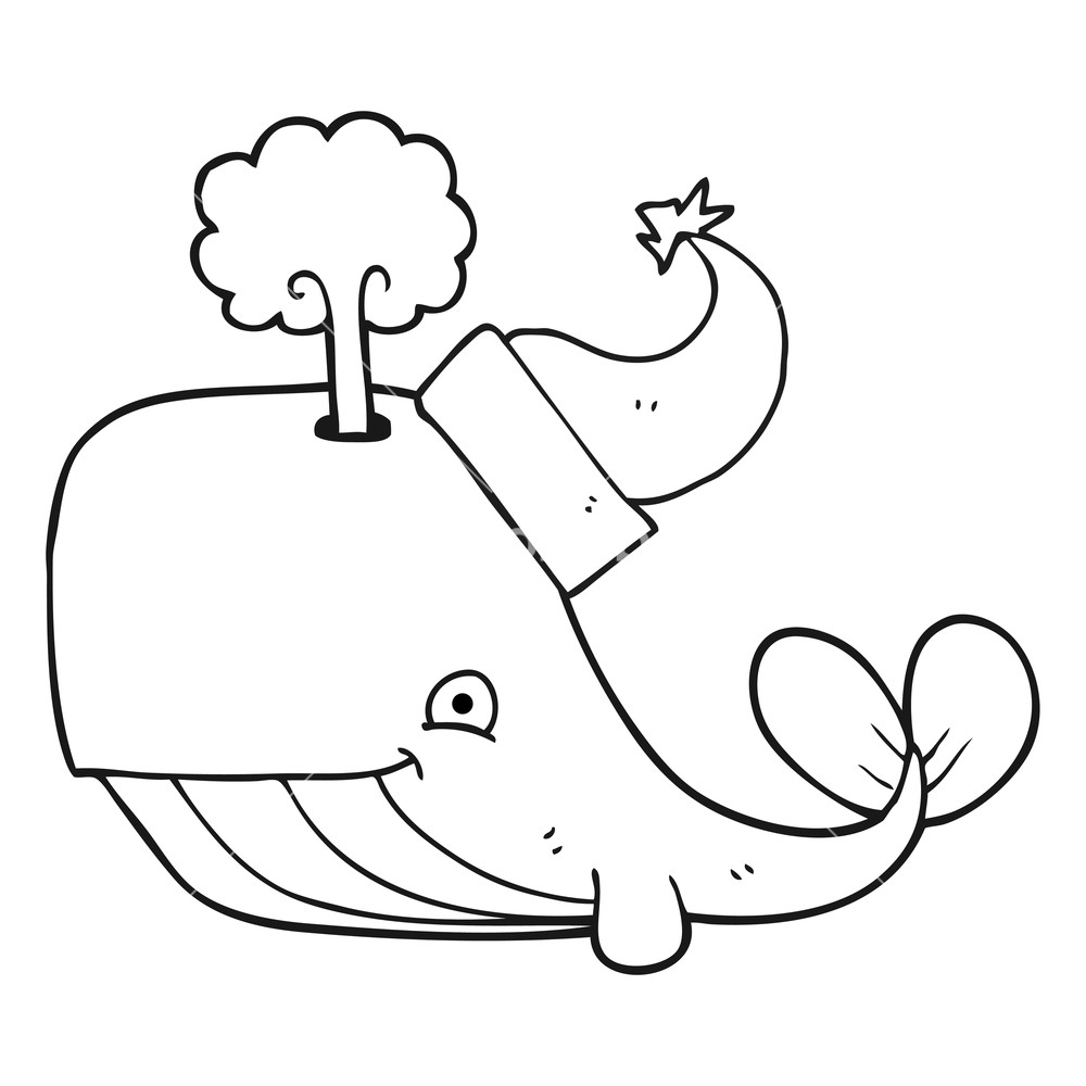 1000x1000 Freehand Drawn Black And White Cartoon Whale Wearing Christmas Hat