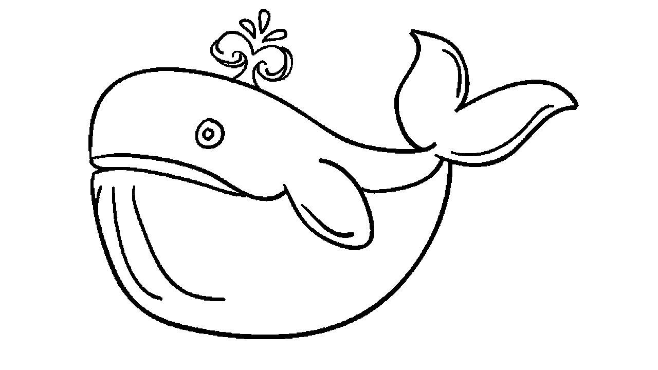 1280x720 Cartoon Whale Drawing How To Draw A Cartoon Whale