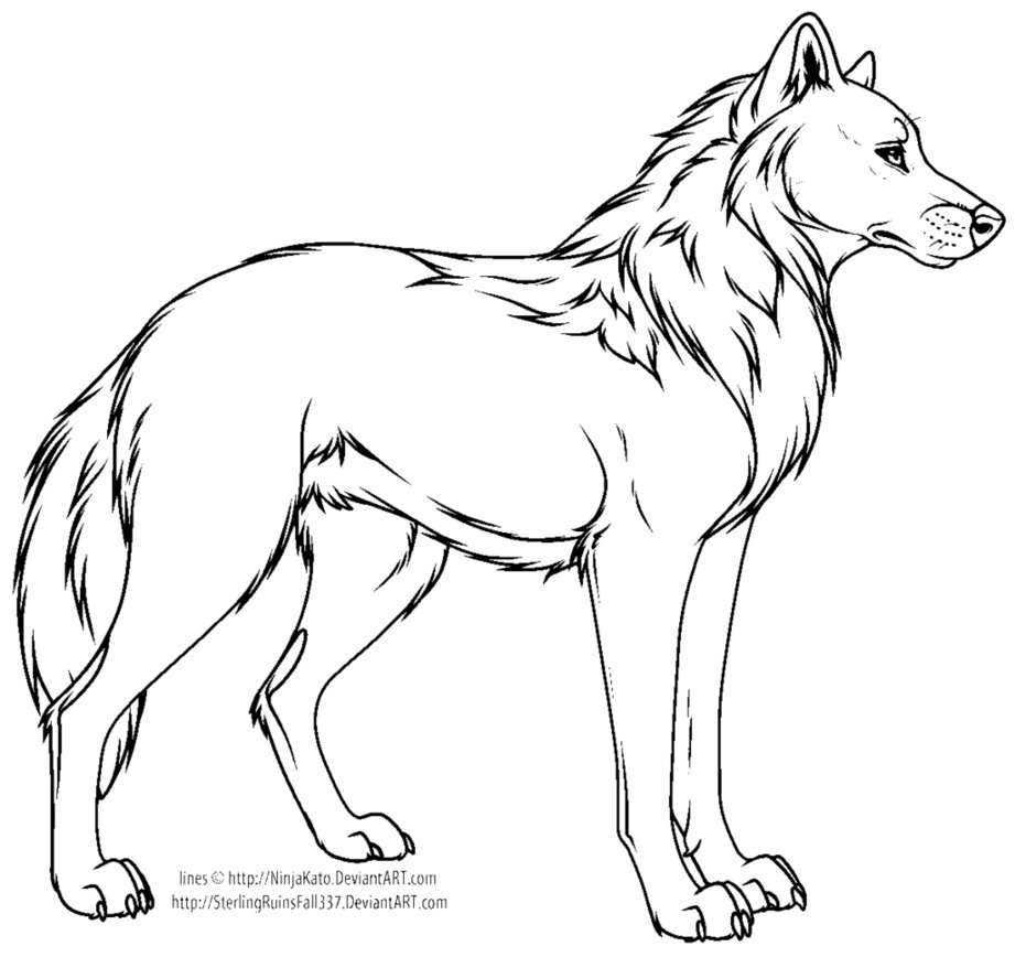 921x868 Cartoon Wolf Or Dog Line Art Ms Paint By Crysta789