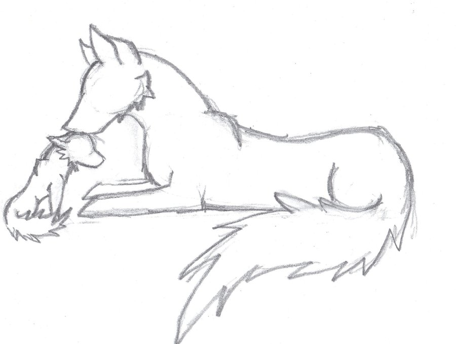900x678 Drawing Wolf Howling Drawing Easy With Wolf Girl Drawing Easy As
