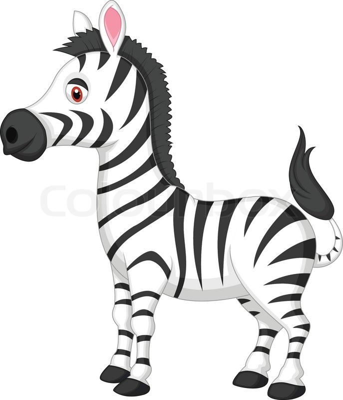 cartoon zebra drawing at getdrawings com free for personal use rh getdrawings com baby zebra clipart free