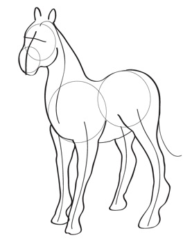 277x346 How To Draw Horses Tutorials Online Drawing Lessons