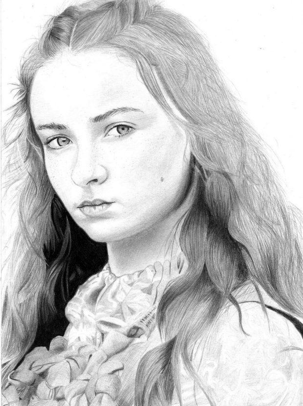 620x831 Sansa Stark Pencil Art Game Of Thrones Main Cast Higrade Media
