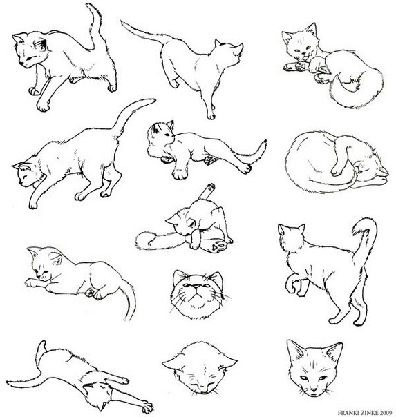 573x604 A90 Drawings, Cat And Cat Drawing