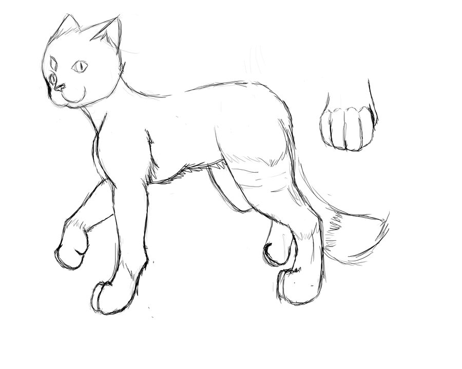 900x720 Cat Wip Practise For A Little Better Anatomy By Lillyth Kitten