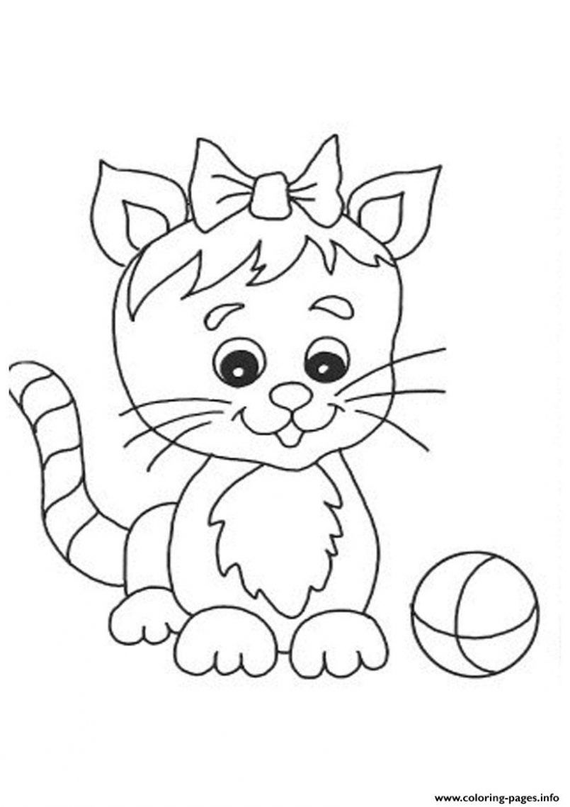 805x1139 Cat Anatomy Coloring Page