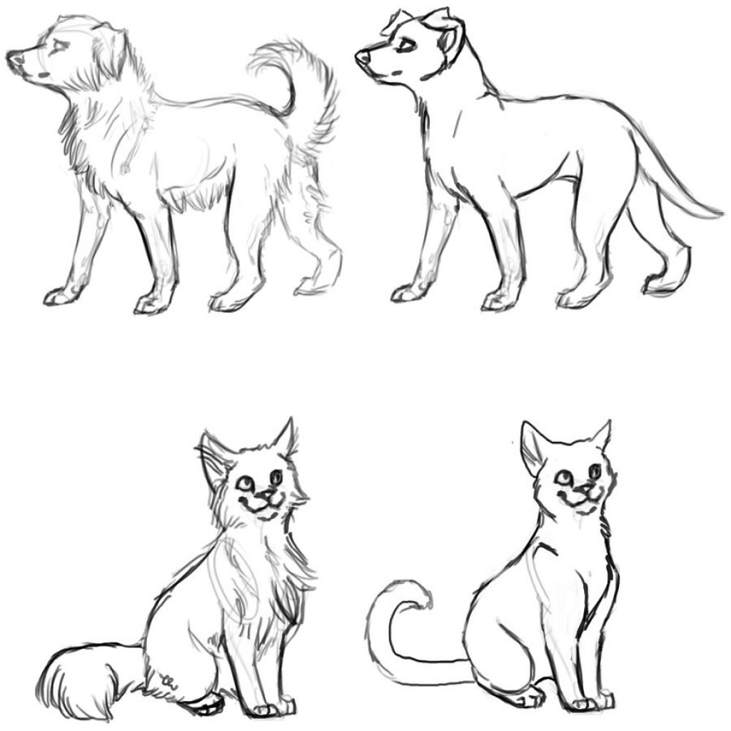 1024x1024 Drawings Of Cats And Dogs Drawings Of Cats And Dogs Cat And Dog