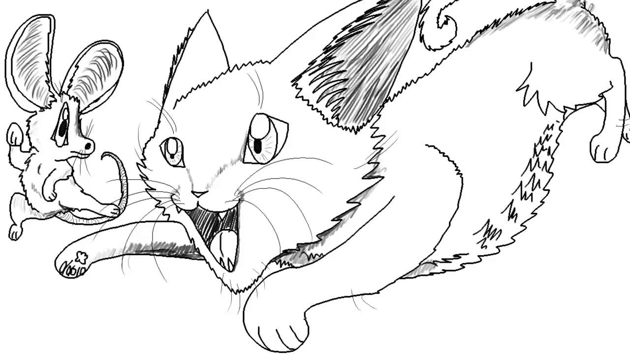1280x720 Cat And Mouse Drawing Cartoon Cat Chasing A Mouse Speed Drawing