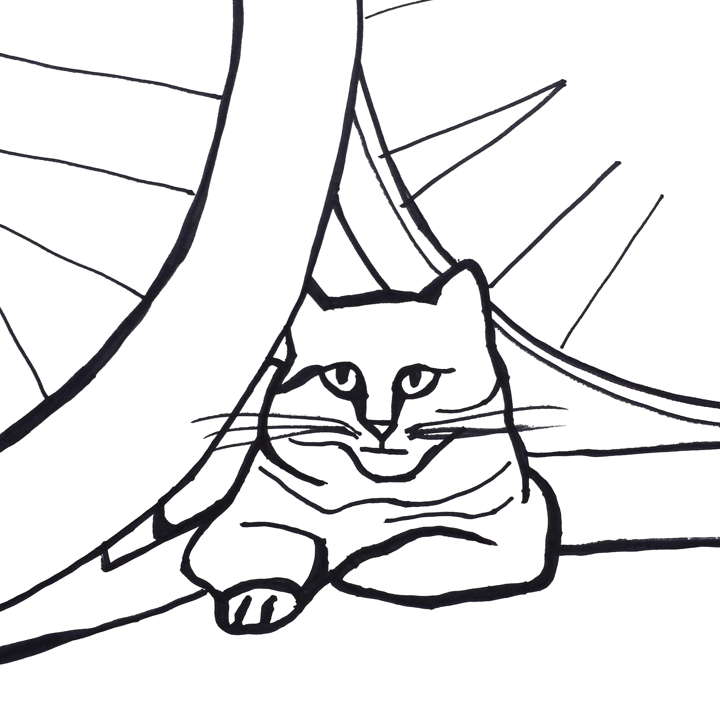 2322x2322 30 Day Minimalist Cat Drawing Challenge