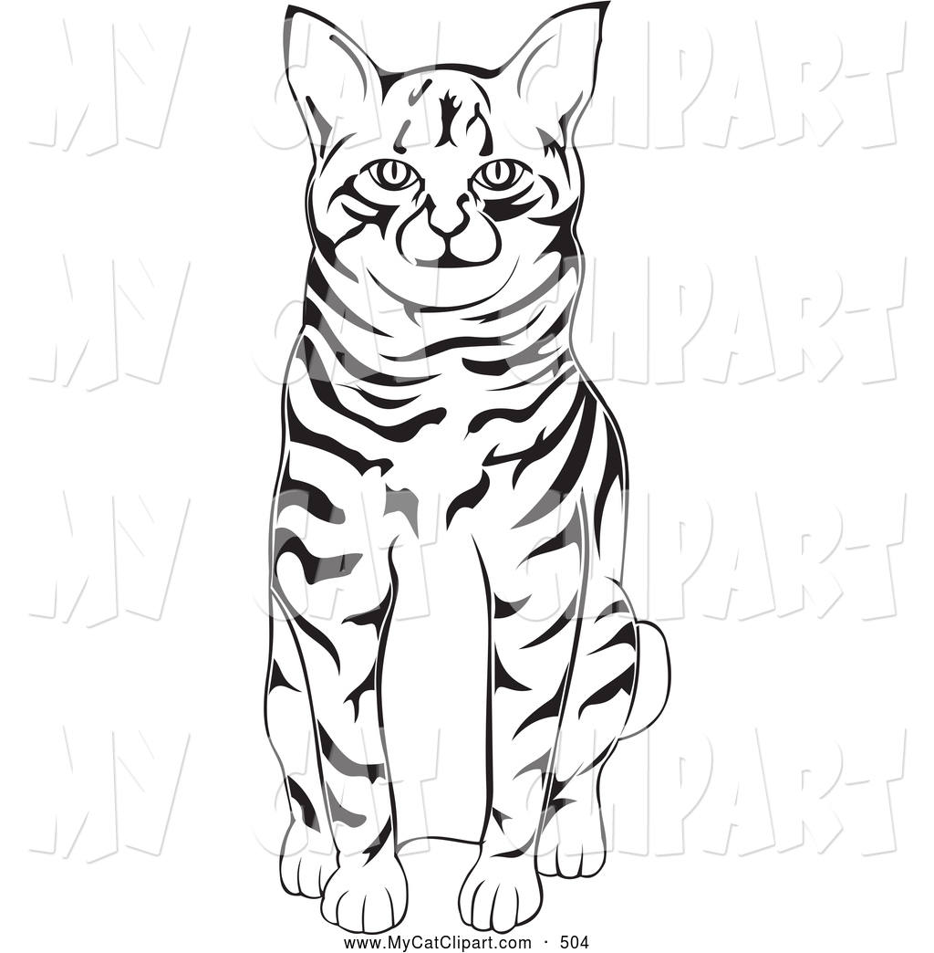 1024x1044 Art Of A Cute Black And White American Bobtail Cat Sitting By