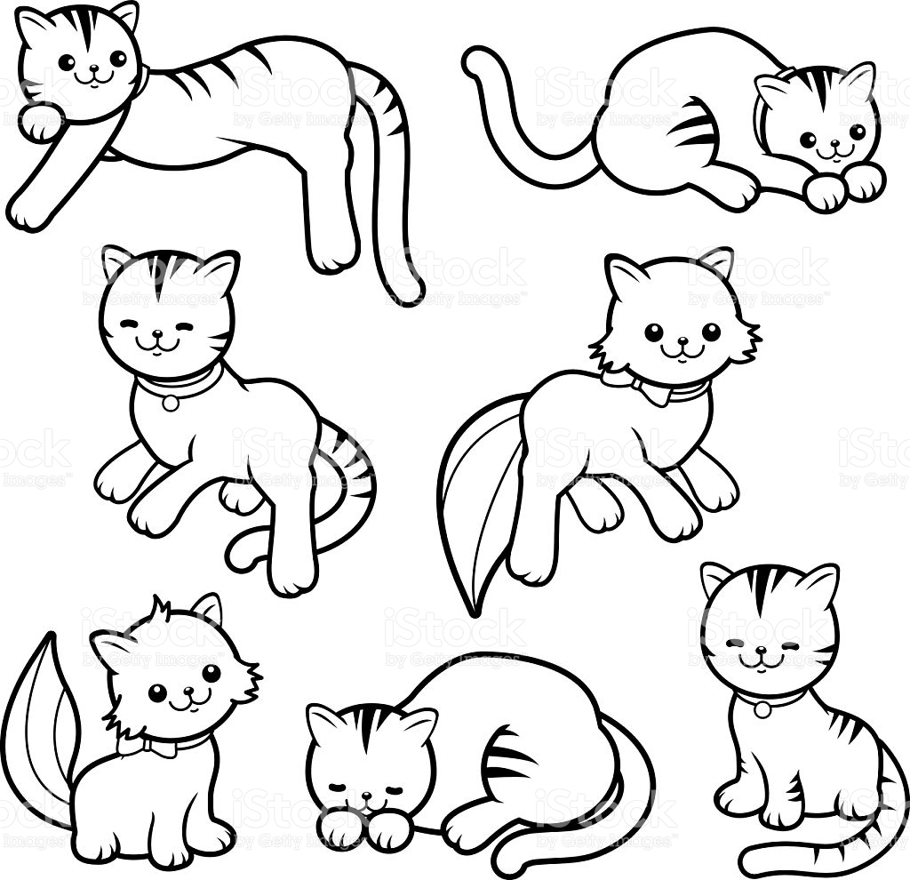 Cat Cartoon Drawing