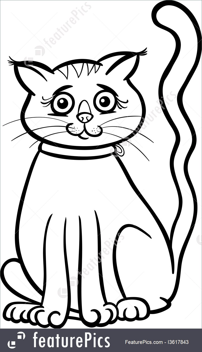 800x1392 Illustration Of Female Cat Cartoon For Coloring Book