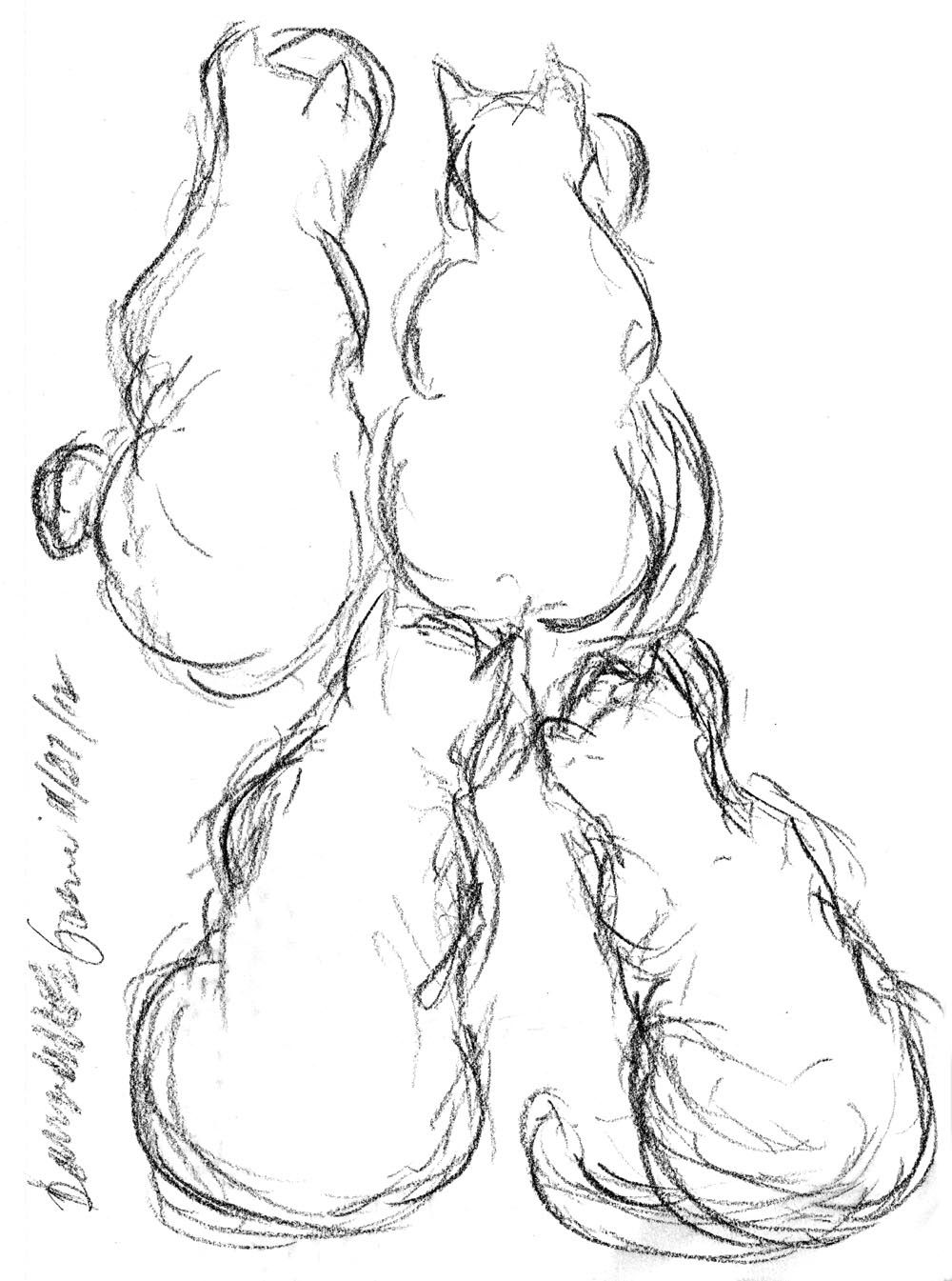 1000x1345 Daily Sketch Four On The Floor Daily Cat Sketches