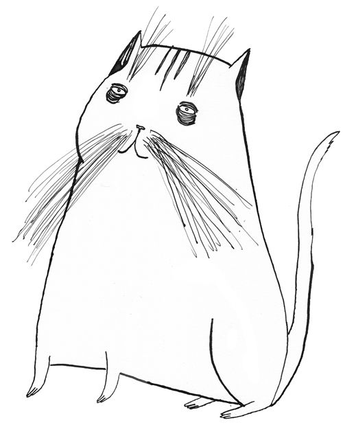 Contour Line Drawing Of A Cat : Cat contour drawing at getdrawings free for personal