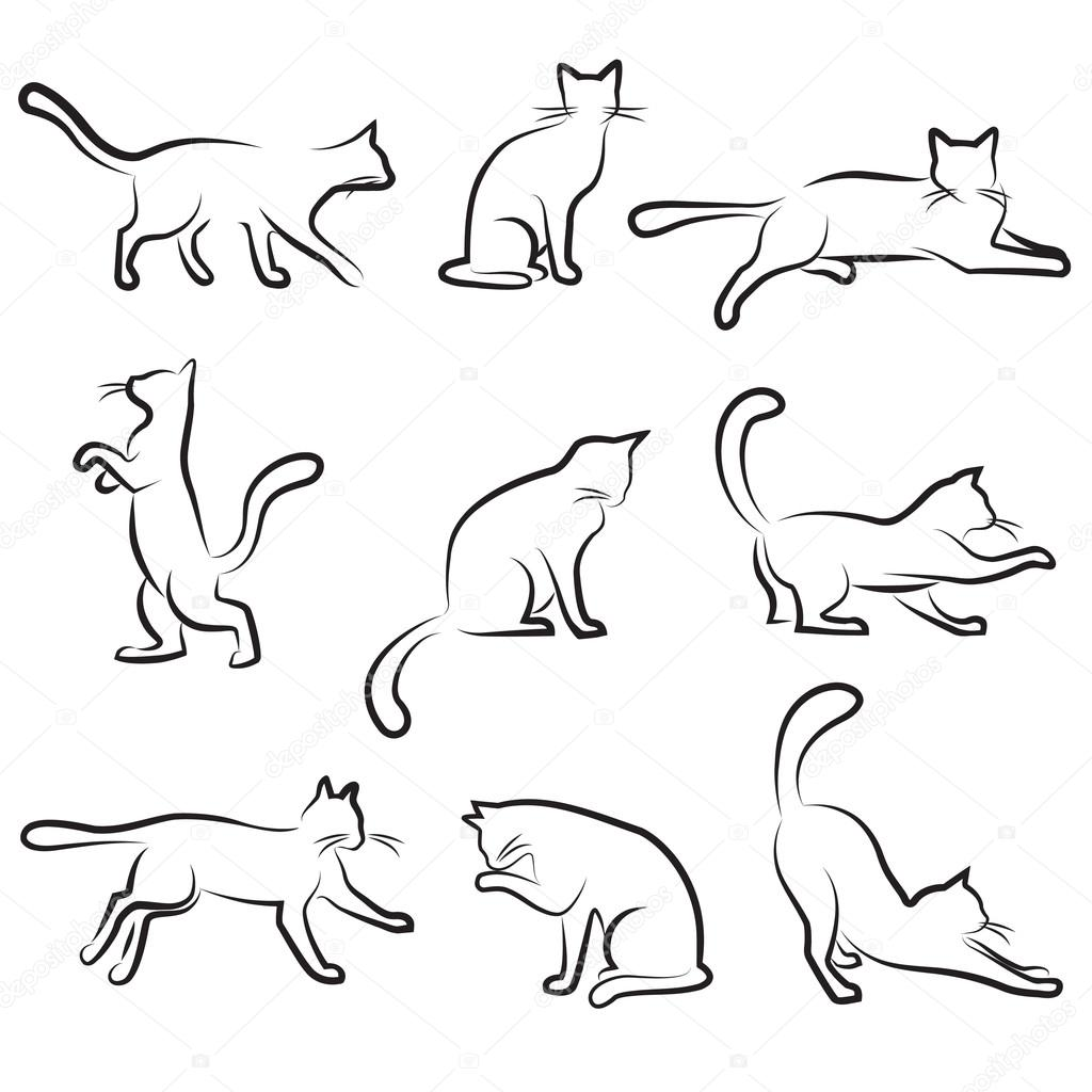 1024x1024 Cat drawing — Stock Vector © bogalo
