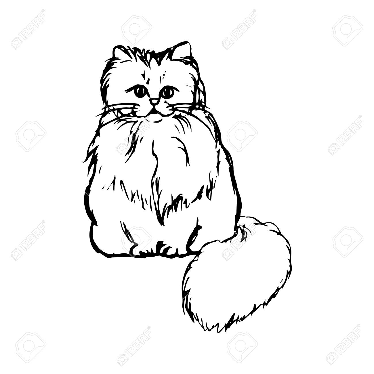 1300x1300 Abstract Drawing Of A Fluffy Cat, Graphic Vector Illustration