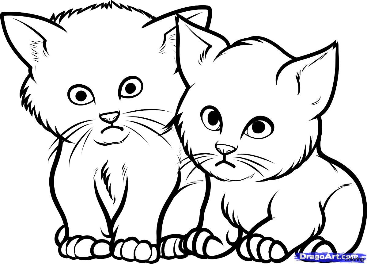 1198x861 How To Draw A Cute Kitten Face T Kittens Coloring Tabby Cat