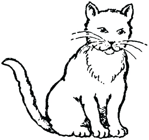 600x564 Kitty Cat Coloring Page
