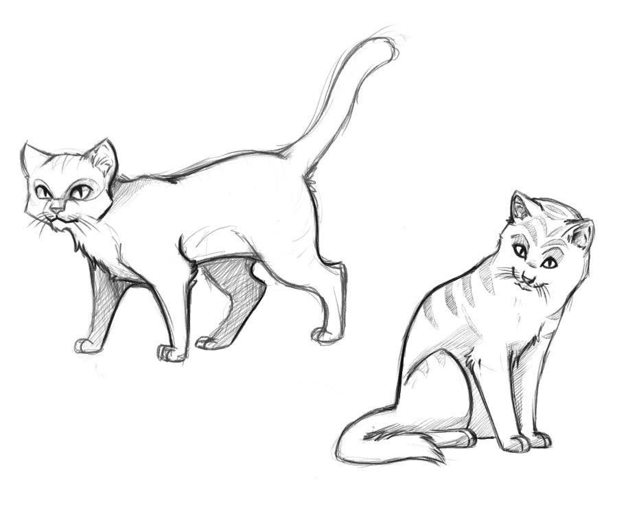 cat drawing for kids at getdrawings com free for personal use cat