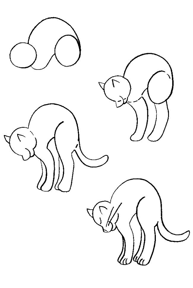 650x970 How To Draw A Cat How To Draw Cat, Drawings