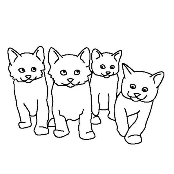 600x600 Kitty Cat, A Kids Drawing Of Four Cute Kitty Cats Coloring Page