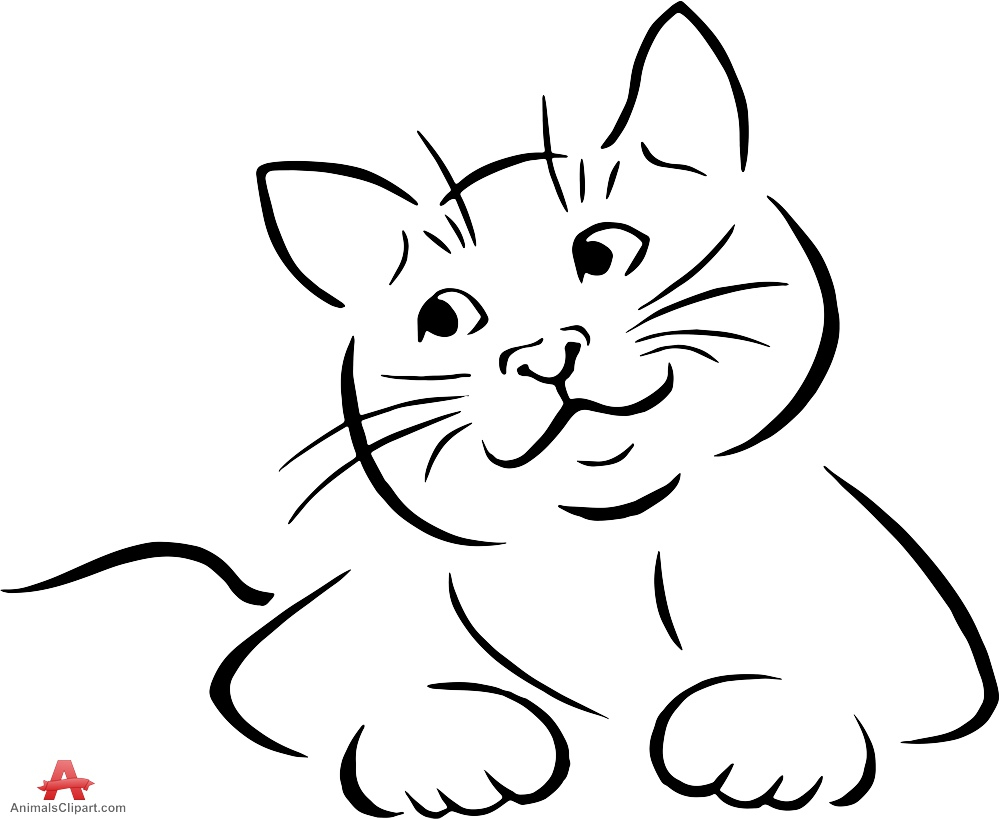 Superb 999x819 Cat Outline Drawing