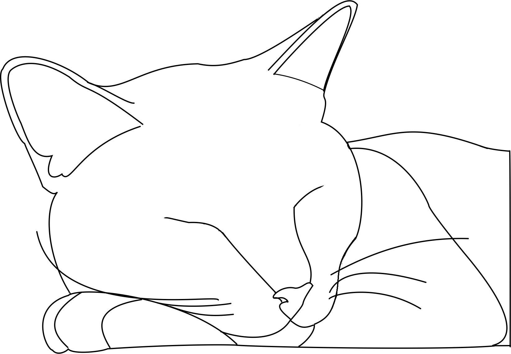1645x1139 Cat Outline Logan By Sgalteran