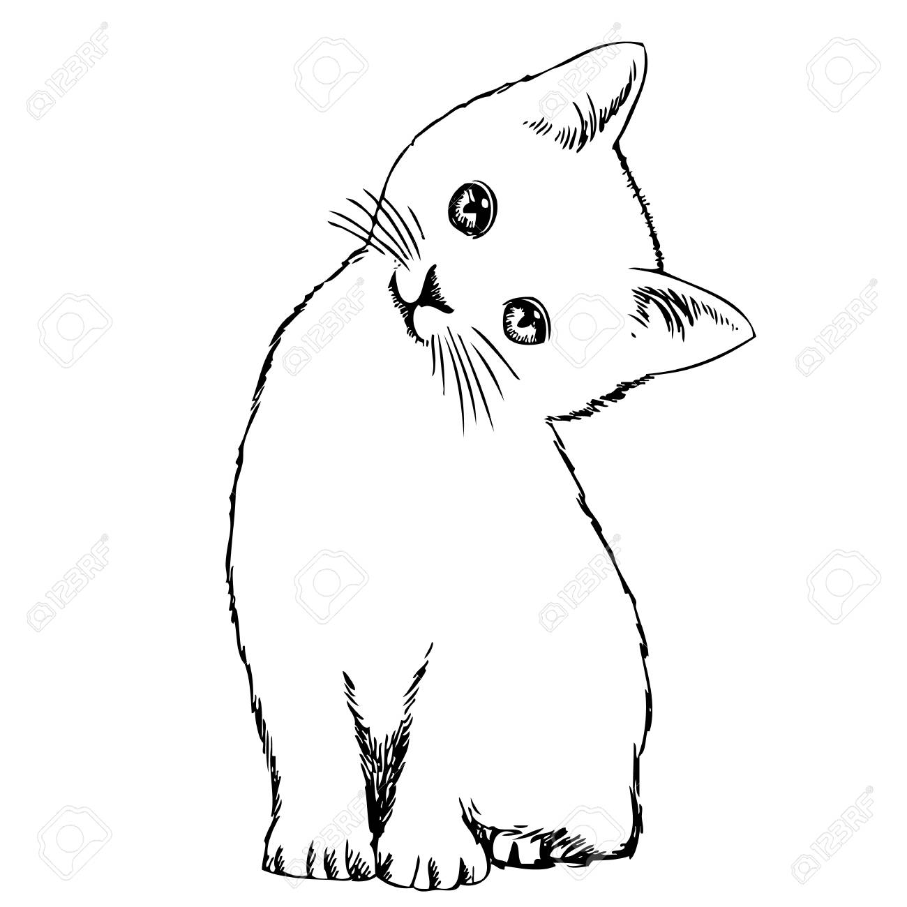 1300x1300 Freehand Sketch Illustration Of Cat, Kitten , Outline, Doodle