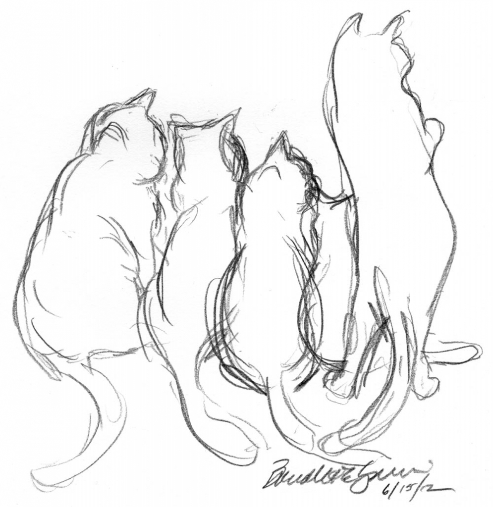 995x1024 Pencil Outline Drawings Pencil Sketch Of Five Cats Archives