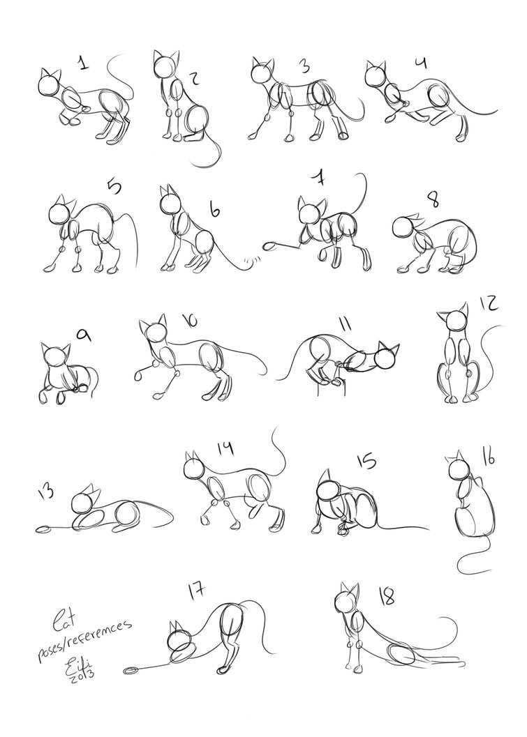 755x1057 Cats Poses References By Eifihanaki
