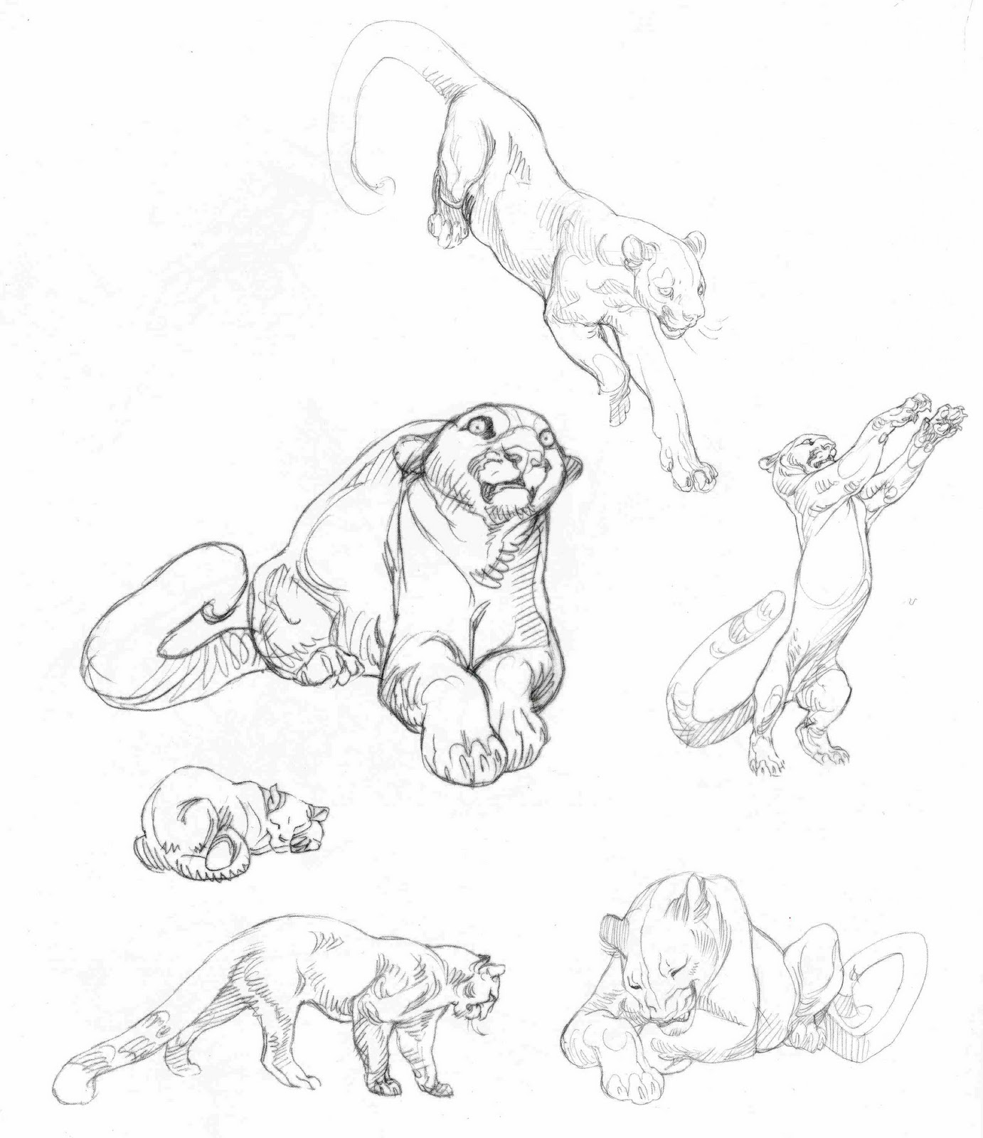 1382x1600 Character And Creature Design Notes Claire Wendling's Cats