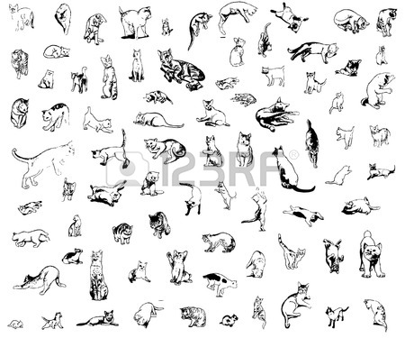 450x375 A Set Of Cats In Different Poses Royalty Free Cliparts, Vectors