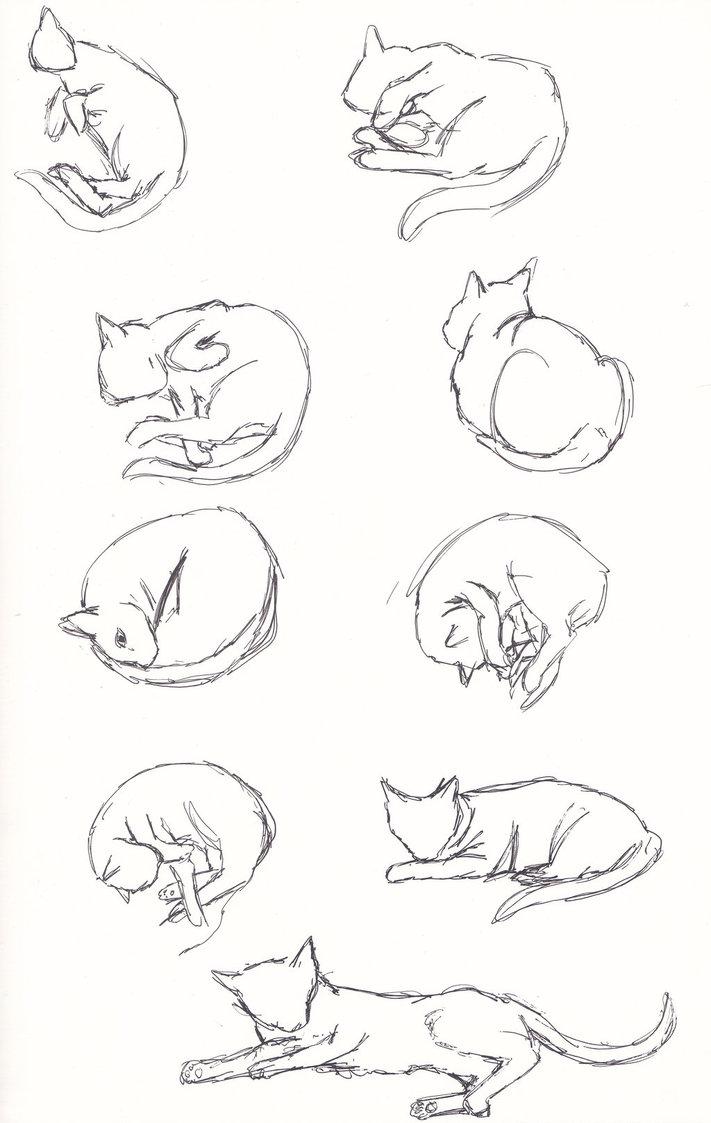 711x1123 Lazy Cat Poses Ii By Tana San