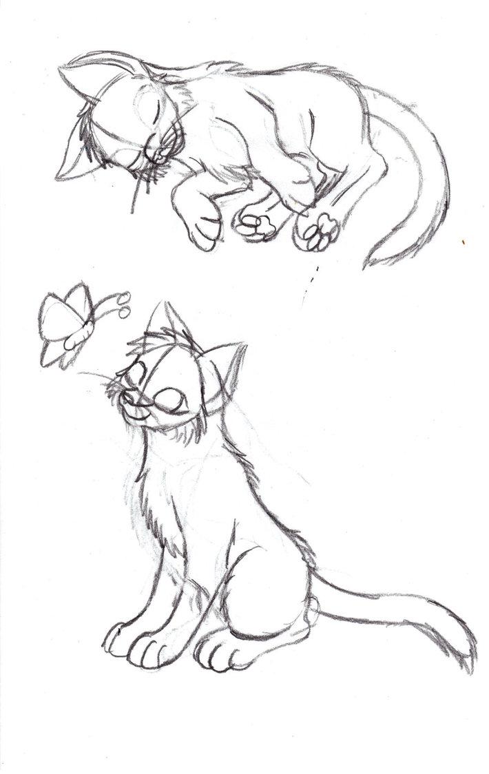 710x1124 Kitten Pose Redo Sketch By Cats Paw Island